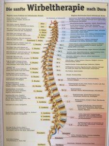 Dorn-Therapie